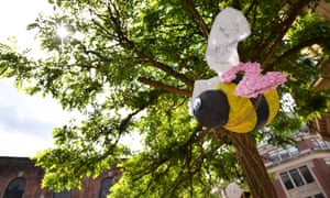 A bee hangs from a tree in St Ann's Square
