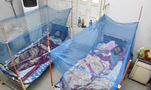 Patients suffering from dengue fever receive medical treatment at an isolation ward at a hospital in Larkana, Pakistan.