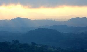 The jungle of Los Tuxtlas biosphere reserve.
