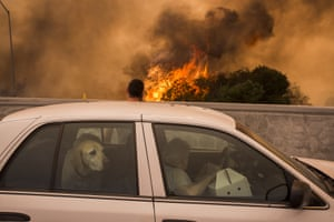 Residents on the 210 freeway try to see if their house and two of their cats on the other side of thick smoke and flames might burn near the community of Tujunga during the La Tuna Fire near Burbank, California.
