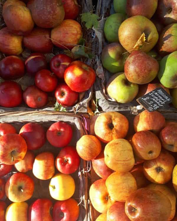 Apple charlotte from Marking Time by Elizabeth Jane Howard