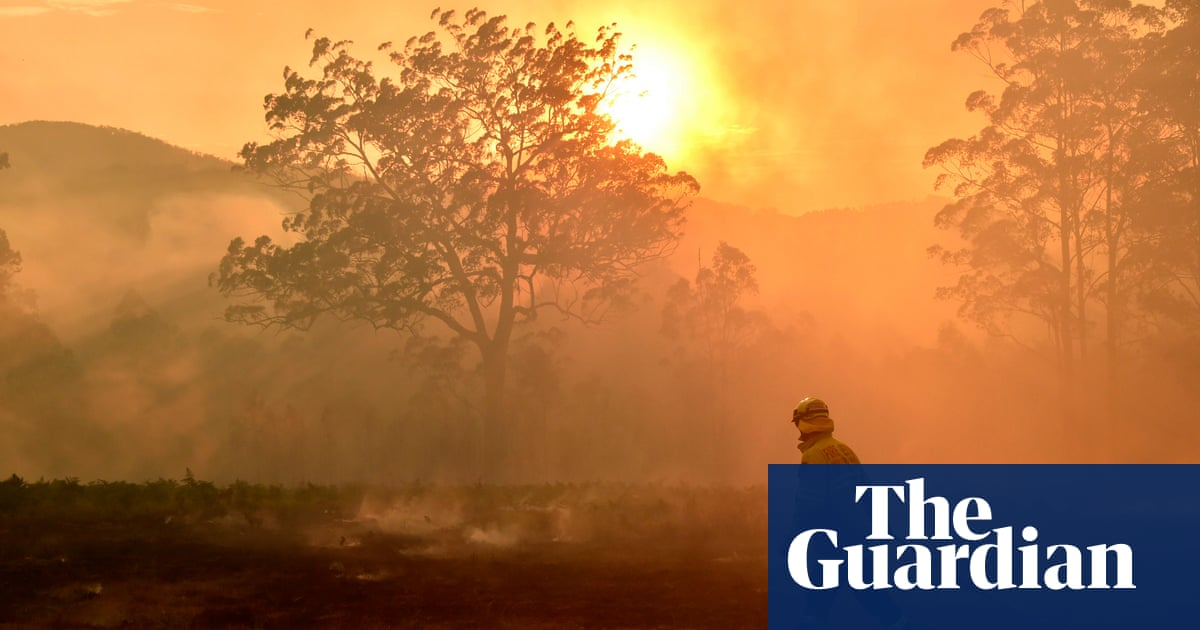 Catastrophic bushfires unlikely in spring 2020 but wet conditions and grass regrowth could pose risks – The Guardian