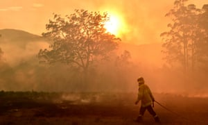 firefighters with hose in smoking bushland