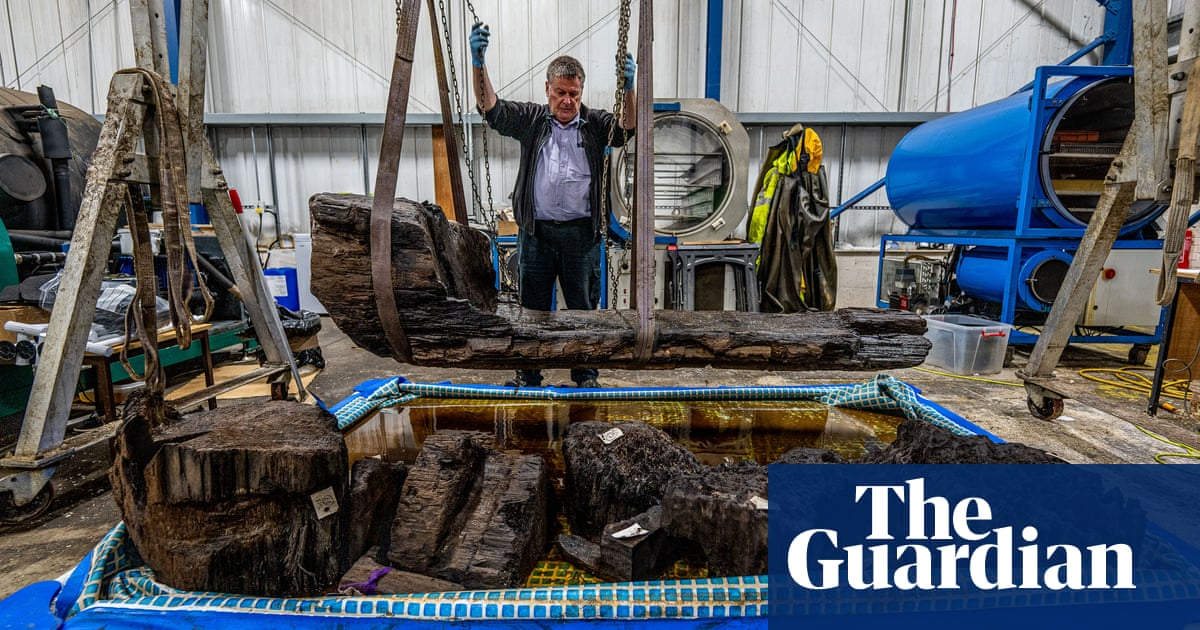 Details of rare bronze age coffin found in golf course pond revealed