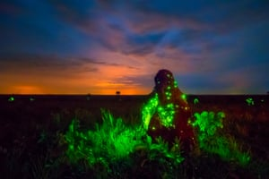 Bioluminescent larvae of headlight beetles attracts flying termites on a termite mound in Emas national park, Brazil