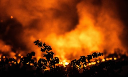 Wildfire flames from the Glass fire near Calistoga, California.