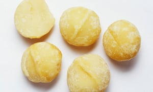 Nut of note: 70% of world's macadamia can be traced back to single