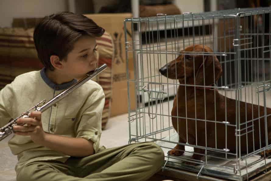 A scene from Todd Solondz's film Wiener Dog, a spin-off of sorts from Welcome to the Dollhouse.