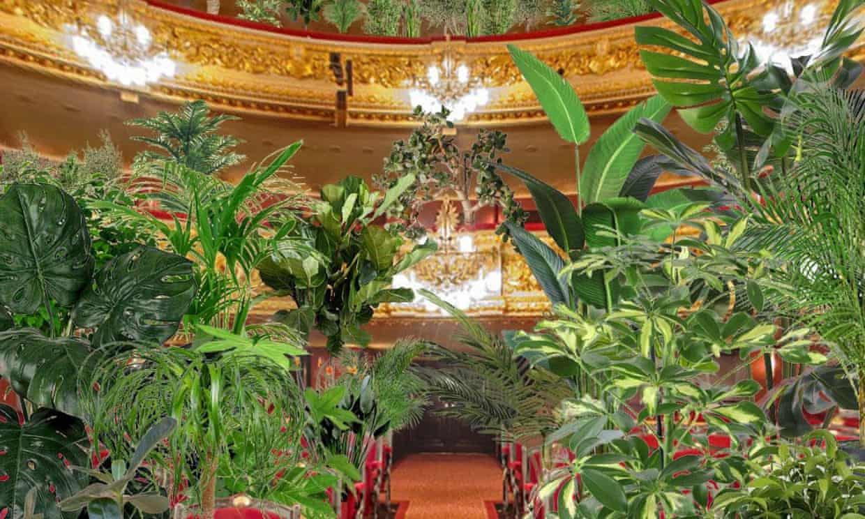 How the plants could look in Barcelona's Liceu opera house during next week's Concert for the Biocene. Photograph: Gran Teatre del Liceu