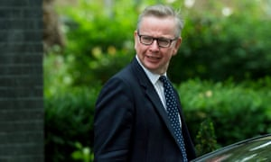 Justice Secretary and Lord Chancellor Michael Gove leaves Downing Street on July 5.