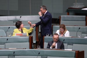 The independent member for Indi, Cathy McGowan, and Labor's Joel Fitzgibbon