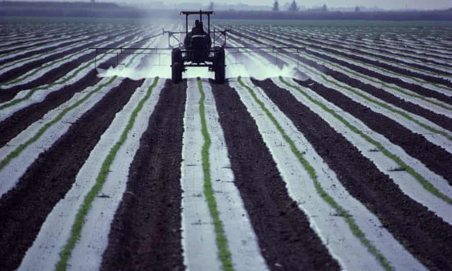 Fertiliser being sprayed on crops
