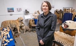 DC Sarah Bailey with some of the finds she has seized from illegal traders.