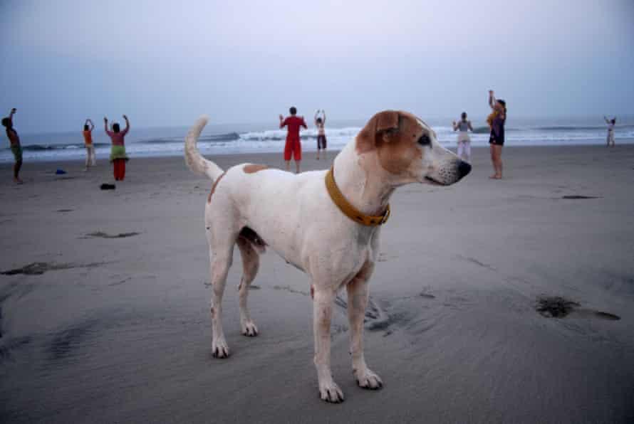 A do in Arambol, the former hippy beach in northern Goa
