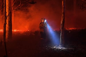 A firefighter struggles to check a tree on ground covered with embers in an effort to secure houses from fires near Nowra in NSW