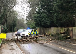 Police at a road in Maidenhead blocked by a fallen tree