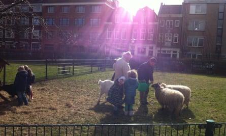 Zimmerhoeve city farm, Amsterdam