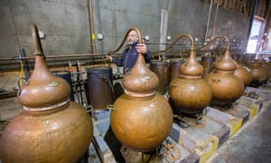 The bulbous copper vats of the English Spirit Distillery in Great Yeldham, Essex
