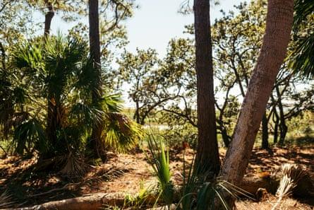 St. Helena Island, South Carolina.