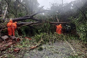 Goa, India: Trees felled by Cyclone Tauktae are cleared off a road in Margao.