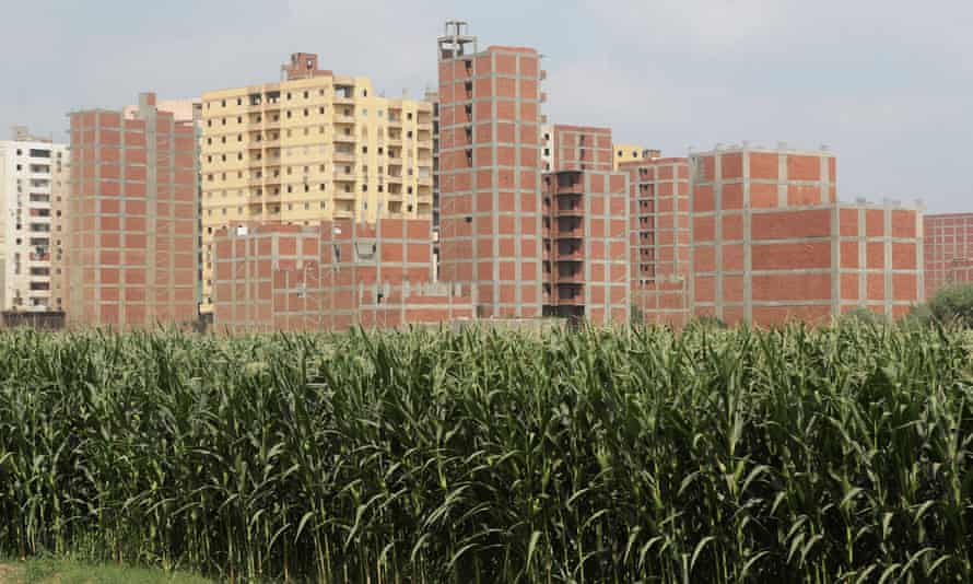 A view of illegal homes near fields in Banha city, north of Cairo, Egypt