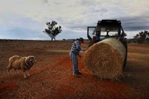 Charlie Brazier, an 83-year-old Merriwa sheep farmer and fodder recipient