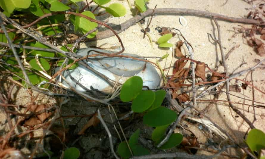 An image of what appears to be an unexploded AO-2.5RT cluster submunition found near Chundikulam.