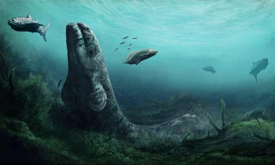 A scene from a tropical swamp 350 million years ago