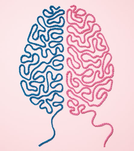 String in the pattern of a brain, the left half blue, the right half pink.