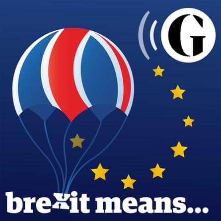 Brexit Means...