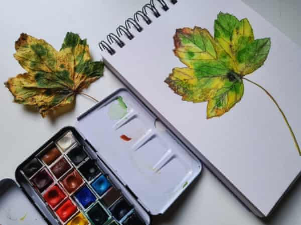 Still life of a leaf with watercolours
