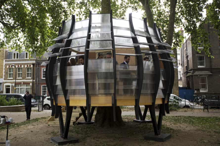 The office built around a tree in Hoxton Square, London.