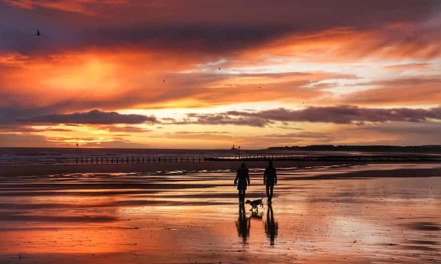 Dog walkers on Blyth beach in Northumberland.