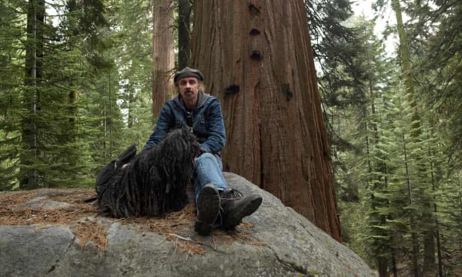 Novelist TC Boyle in Giant Sequoia national monument.