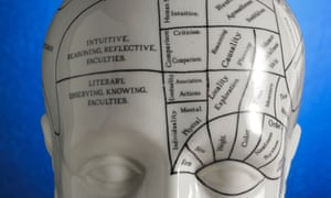 Close up of Phrenology diagram