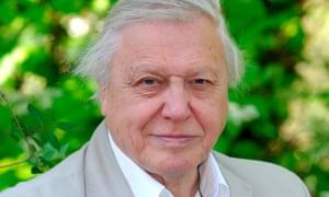 Wonderful … David Attenborough.