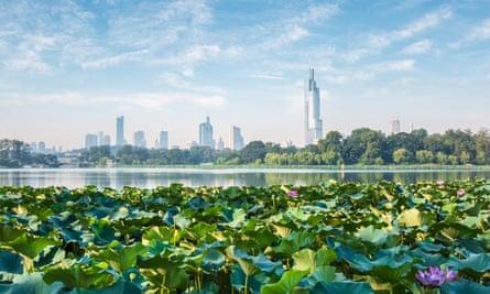 nanjing skyline and lotus.