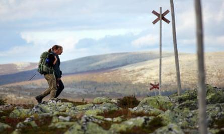 St. Olavsleden trail walking holiday by Nordic Pilgrim