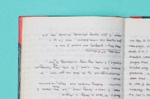 Palin's diary
