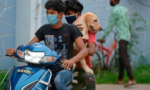 Pet owners carry their dog for its vaccination at a government veterinary hospital in Hyderabad on World Zoonoses Day on 6 July 2020.