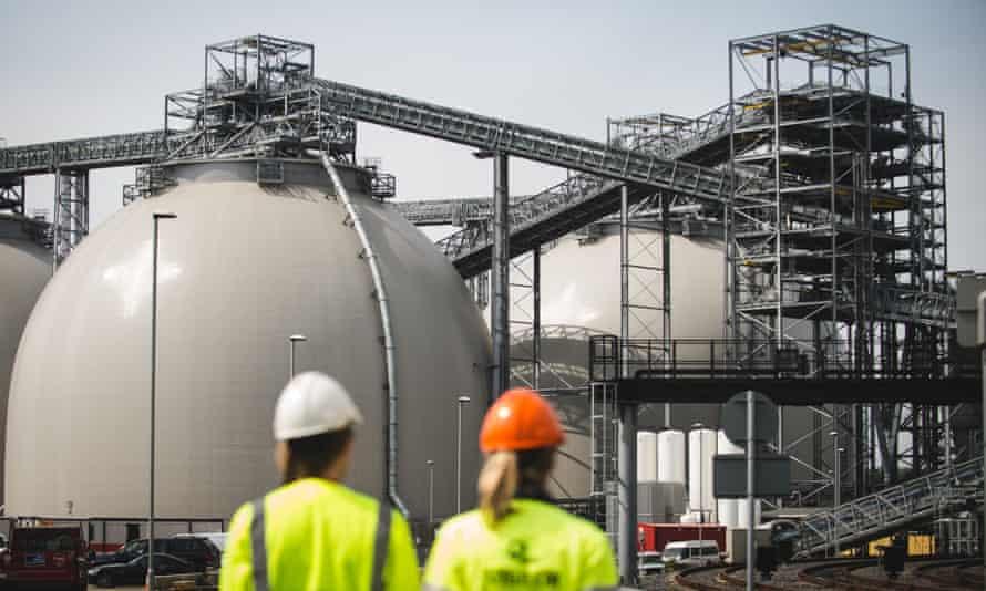Biomass domes