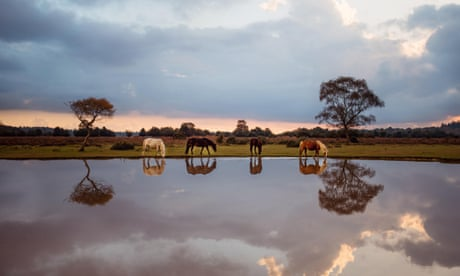 National Geographic Traveller photography competition finalists