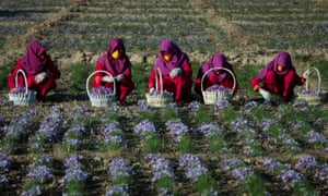 Afghanistan is one of the countries that has discriminatory laws around women's ability to work or move freely.