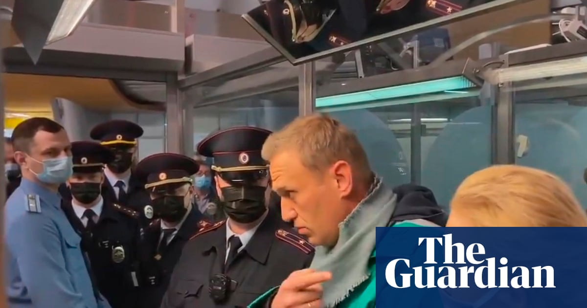 Alexei Navalny: calls grow for release of arrested Russia opposition figure - the guardian