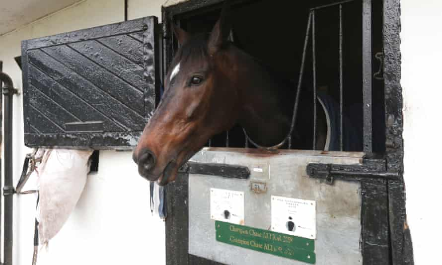 Altior in his stables