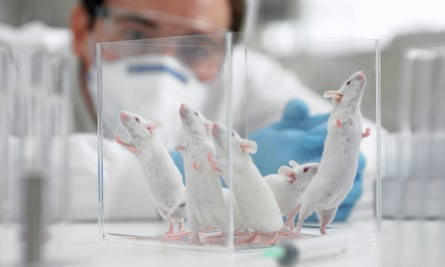 The director of the Wellcome Trust believes new techniques reduce the need for animal tests.