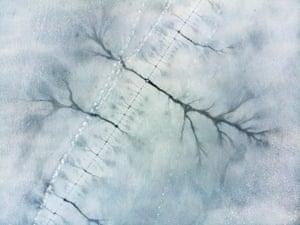 Runner up Landscapes: Eberhard Ehmke (Germany), Ice trees