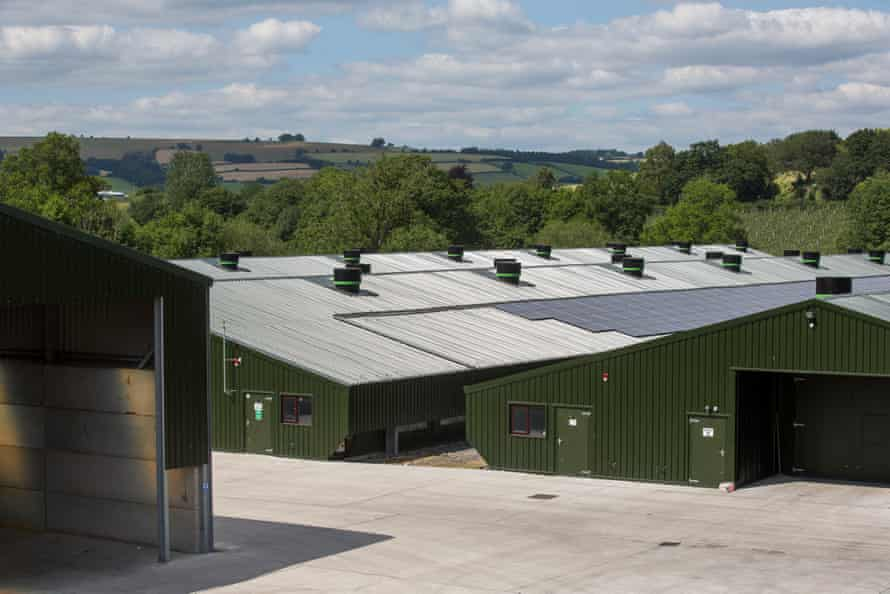 Penrhos Poultry Limited in Kington, England.