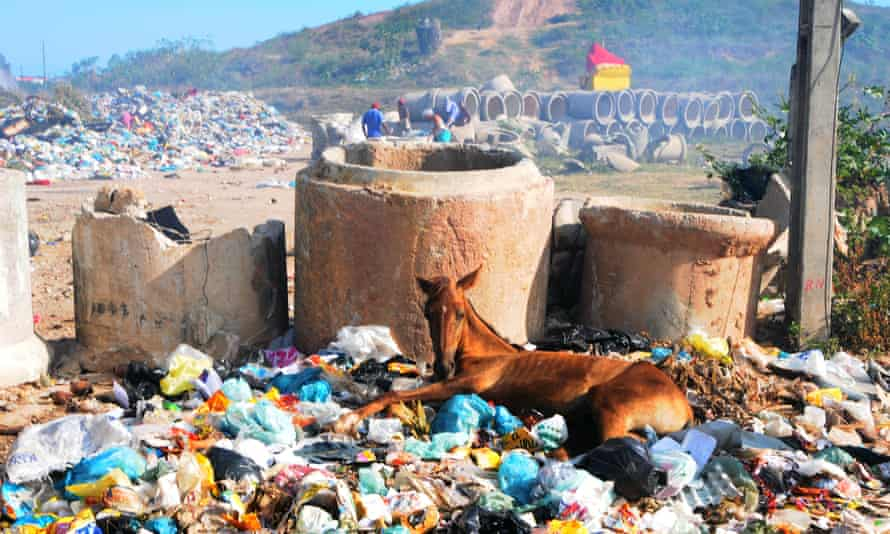 Aguazinha landfill in Olinda, Brazil. Less than 1% of Brazil's concrete waste is recycled.