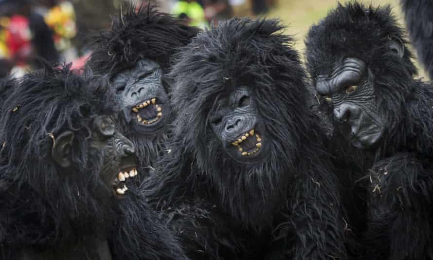 The annual naming ceremony for newborn gorillas mirrors <em>kwita izina, </em>a centuries-old Rwandan tradition that celebrates the birth of a child.